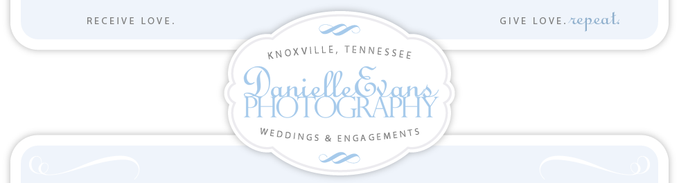 danielleevansphotography.com logo